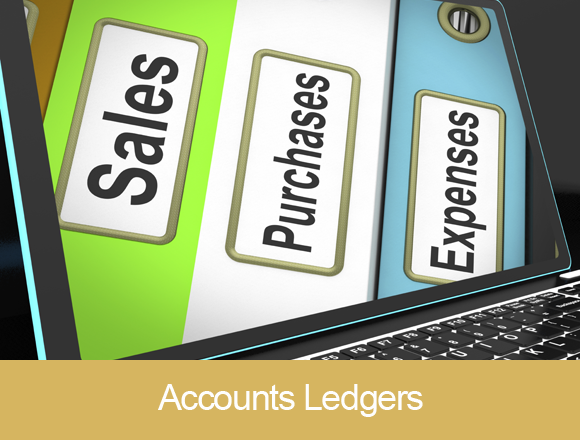 Accounts Ledgers
